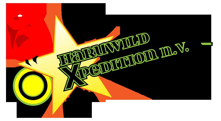 Desk Web Design Logo Haruwild