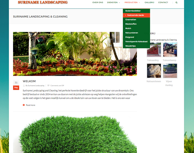 Redesign Suriname Landscaping & Cleaning